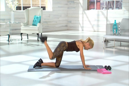 Tracy Anderson Metamorphosis Leg Lifts
