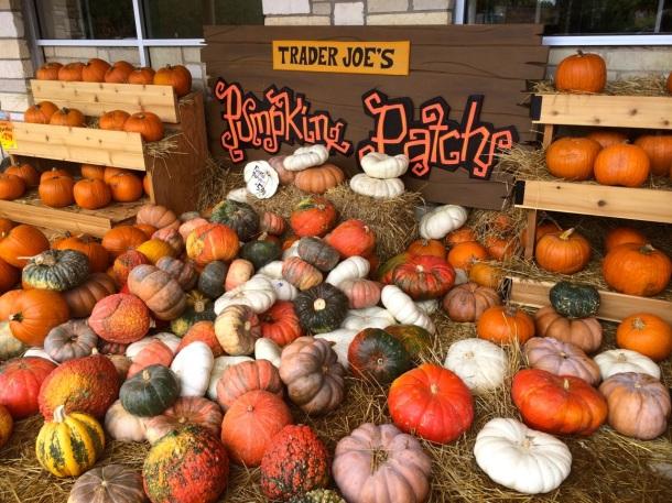 Austin Trader Joe's Pumpkins